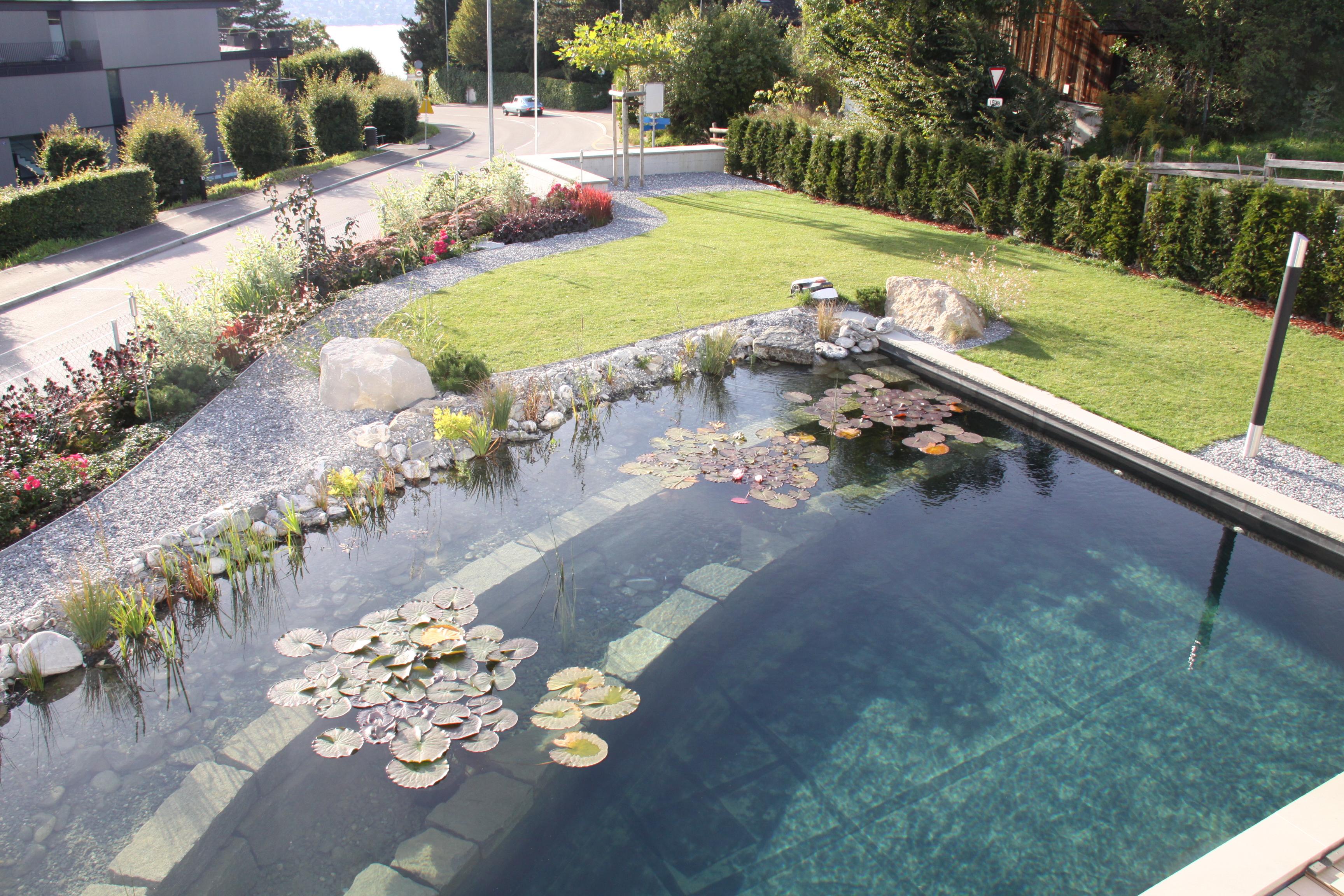 Design-Schwimmteich