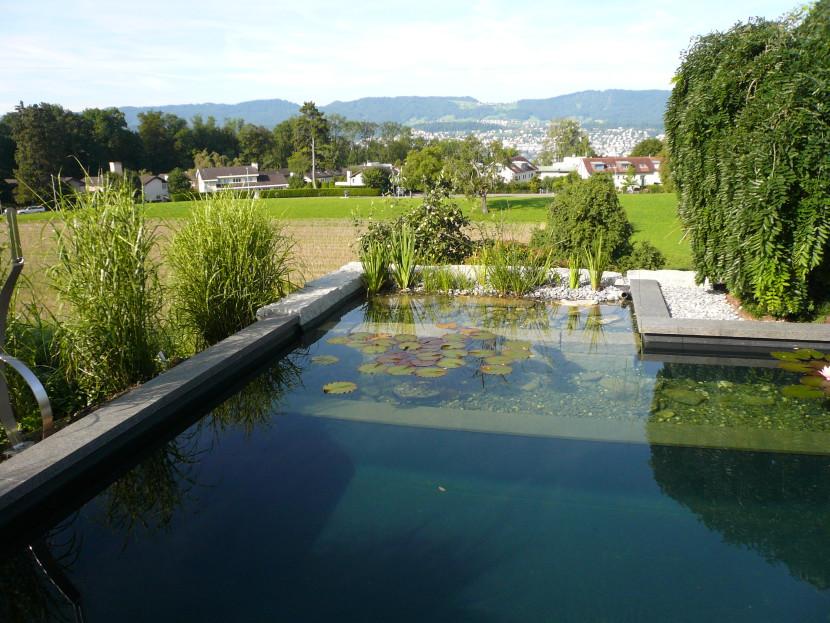 Schwimmteich Deutschschweiz