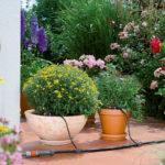 Bewässerungsanlage Garten und Terrasse