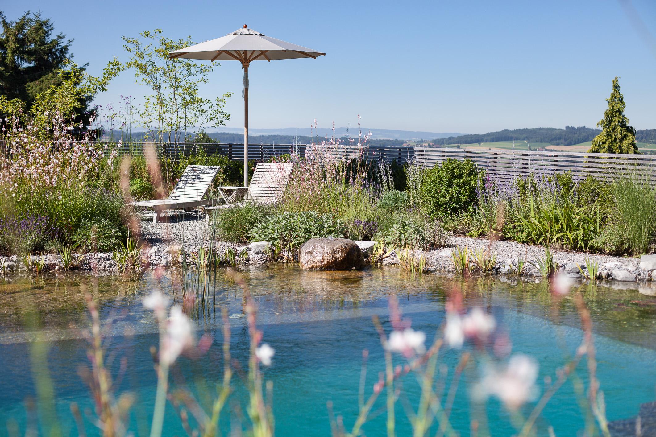 Natürlicher Schwimmteich Schweiz