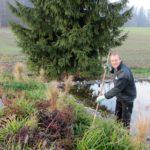Teichpflege Frühling Gärtner