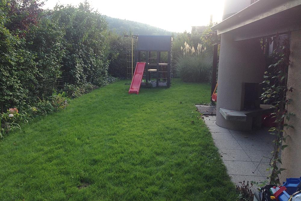 Privatgarten-mit-Naturpool-vorher-9