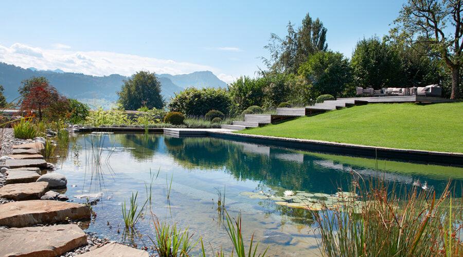 gartengeplaetscher-schwimmteich-traumgarten-wassergarten-1